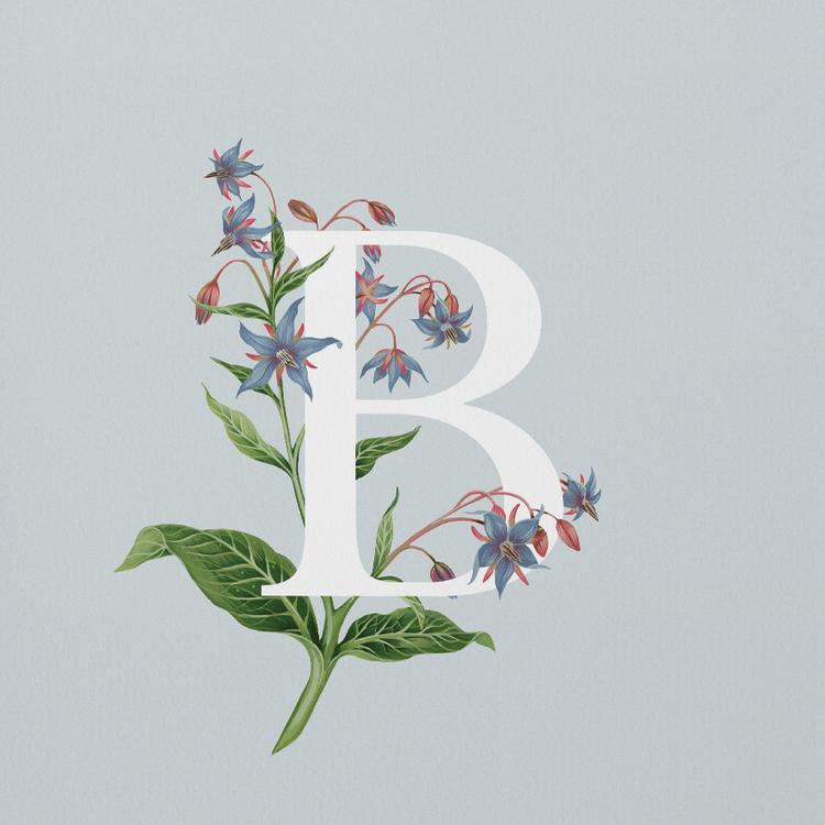 A4_crop_B